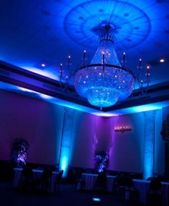 Elegant Uplighting